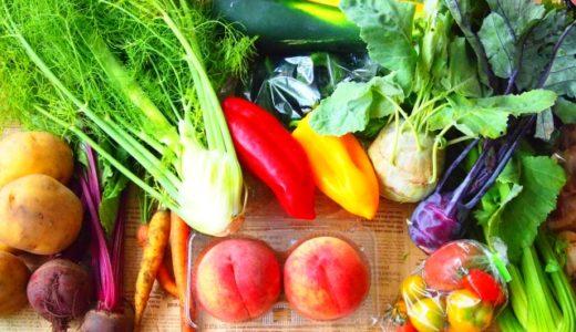ファイトケミカルスープのレシピ|野菜くずでも作れる?圧力鍋が便利?