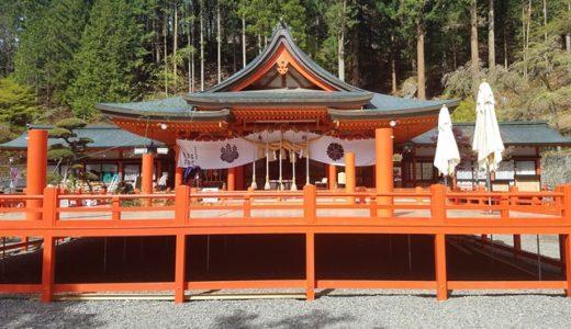 金櫻神社の鬱金桜は黄金色のパワースポット【山梨県】