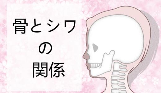 【実践美容法】骨美人になる方法!骨を若返らせて若見え効果