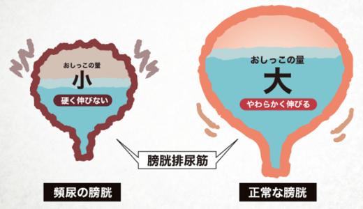 頻尿や尿もれは生漢煎(漢方)やお茶やサプリで改善できる?