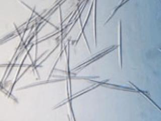 【スピキュール美容液】海綿を使った塗るマイクロニードルおすすめの化粧品はどれ?