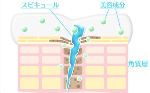 マイクロニードルクリーム(美容針入りクリーム)の効果と口コミ!自宅でエイジングケアおすすめ5選!