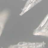 ニードルパッチは効果ない?それならクリスタル型ヒアルロン酸を試してみる?